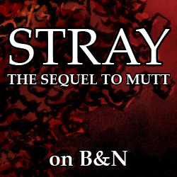Get Stray at Barnes & Noble!